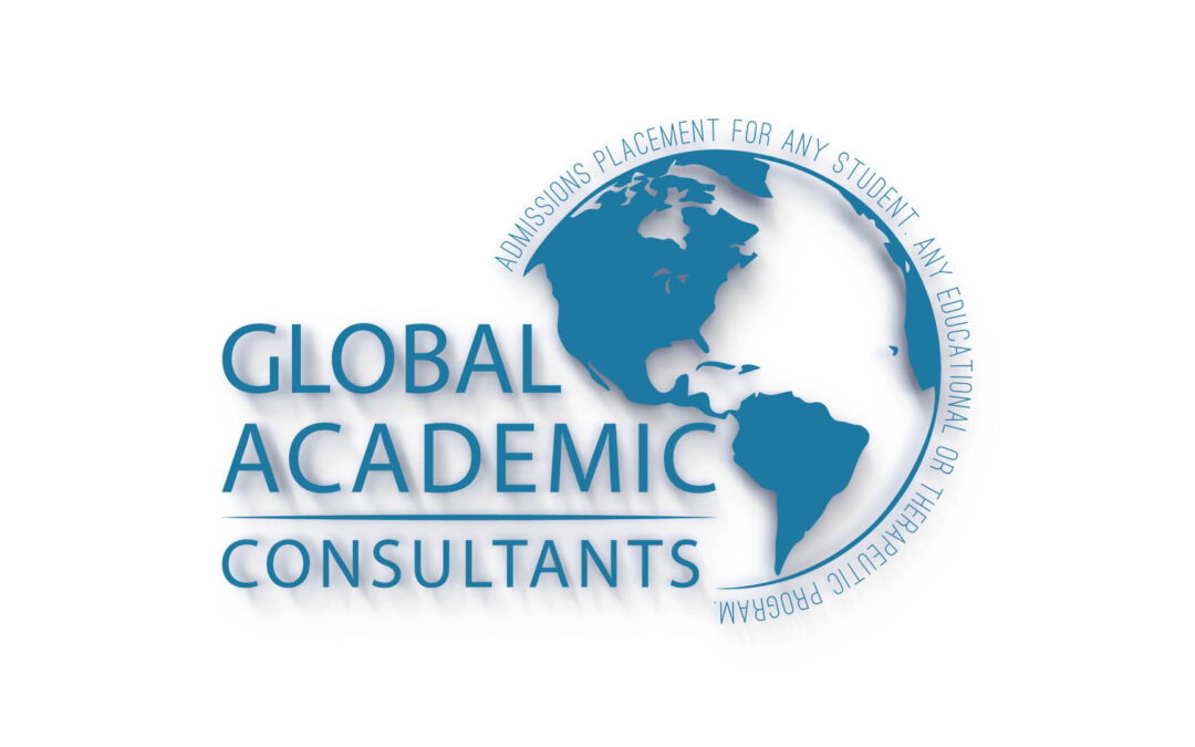 How Can An Educational Consultant Help You?